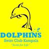 Dolphins Swim Club